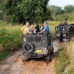 06 Viajefilos en Sri Lanka. Minneriya 13
