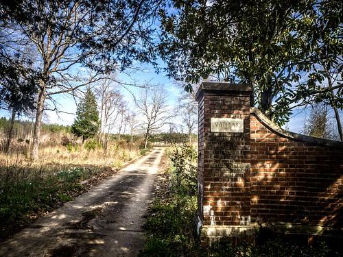 Matthews Cemetery-013