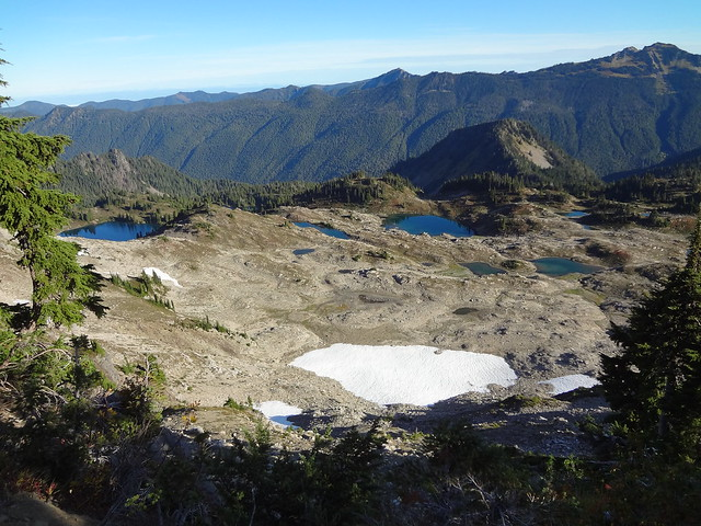 7 Lakes Basin From Bogachiel Peak