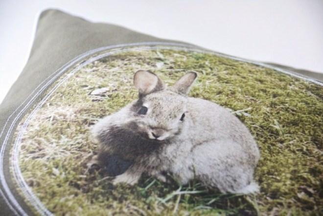 Couchküsschen_Kaninchen