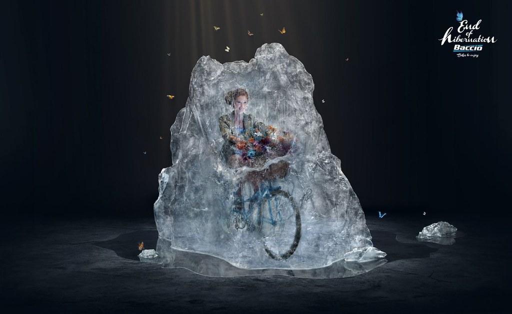 Baccio Bikes - Hibernation