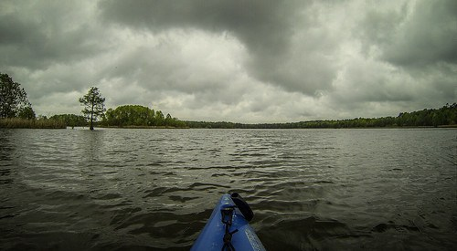 Lake Marion Plantation Islands-016