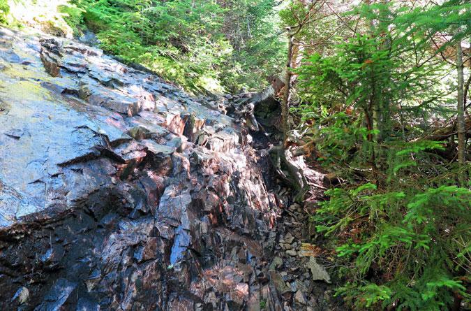 Signal Ridge Trail Ledge