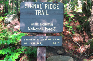 Signal Ridge Trail Sign