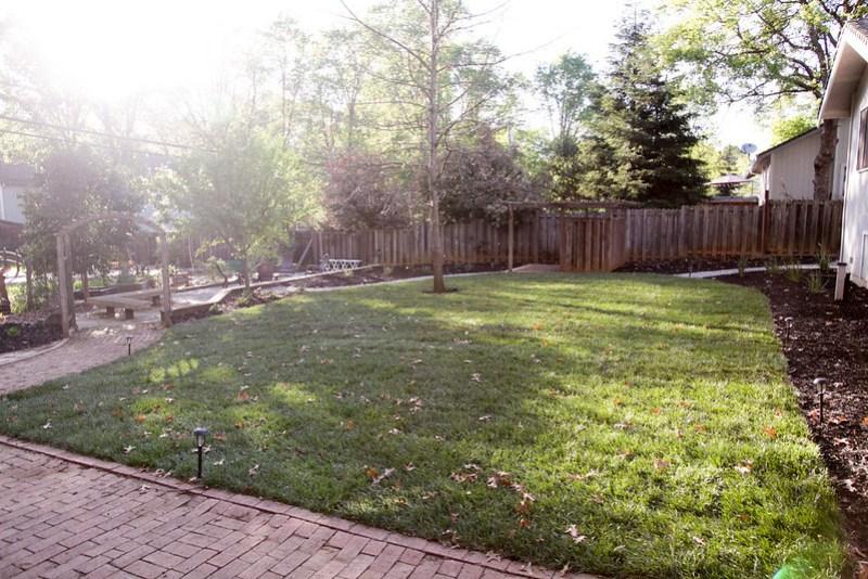 Backyard Makeover Reveal
