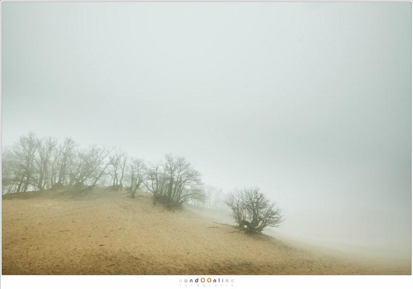 Zonsverduistering en mist. Bedafse Bergen in de mist