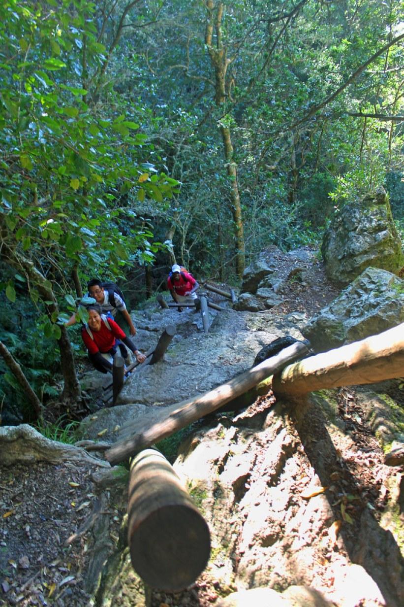 Vandring op af Table Mountain
