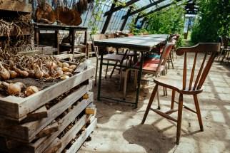 Amelishof: onions