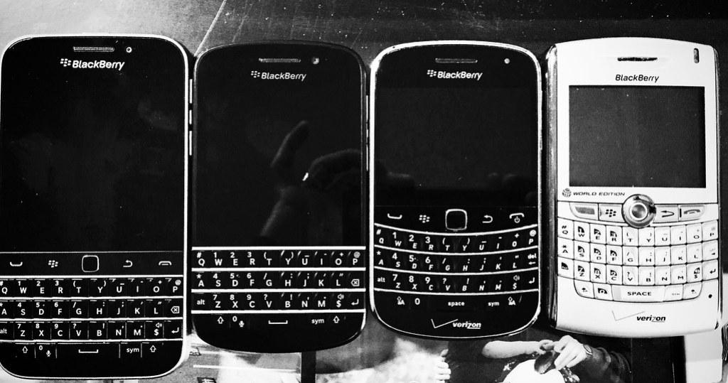 My Blackberries...