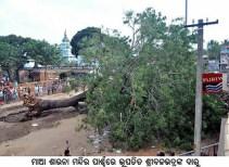 Fallen Shri Balavdra Daru