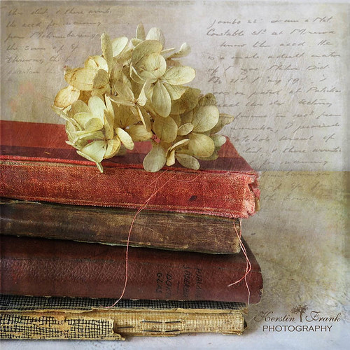 .. hydrangea and books ..