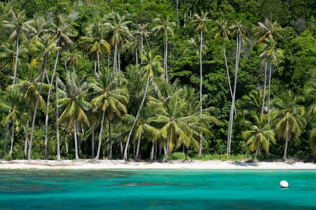 Sandy Bay, Malenge Island, Togean Islands