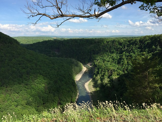 Temple Hill, Letchworth State Park, Frosty Hollow