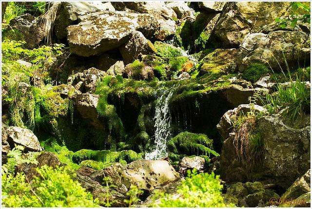 watervalletje (7D027207)