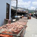01 Viajefilos en Koh Samui, Tailandia 107