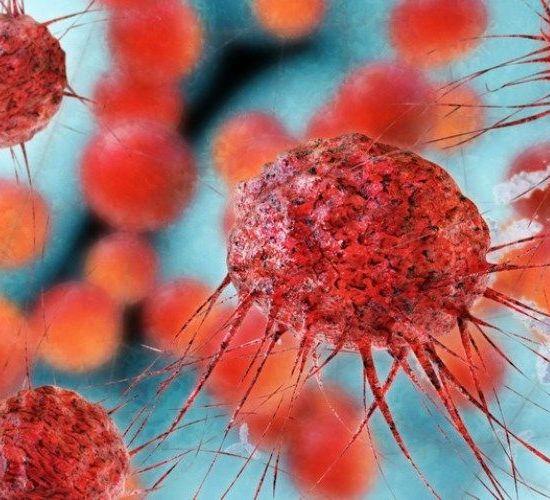 Industria farmacéutica trabaja en medicamentos antivirales