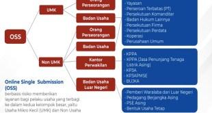 Dampak Permohonan Surat Izin Apotek Pakai Syarat NIB Bagi Apoteker
