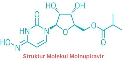 Struktur kimia Molnupiravir