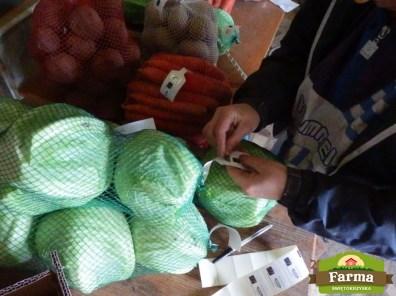 pakowanie-warzyw