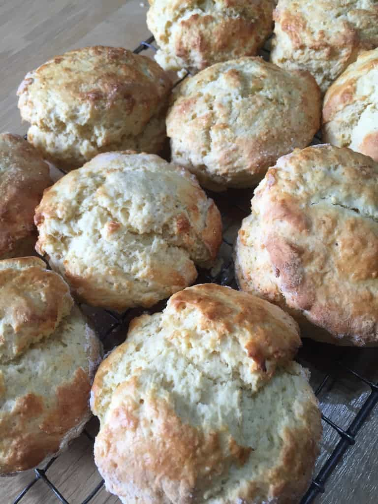 Freshly baked scones on the cooling rack
