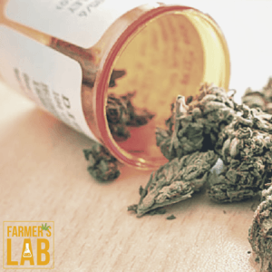Cannabis Seeds Shipped Directly to Your Door in Clarendon Hills, IL. Farmers Lab Seeds is your #1 supplier to growing Cannabis in Clarendon Hills, Illinois.