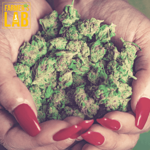 Cannabis Seeds Shipped Directly to Your Door in Farmersville, CA. Farmers Lab Seeds is your #1 supplier to growing Cannabis in Farmersville, California.