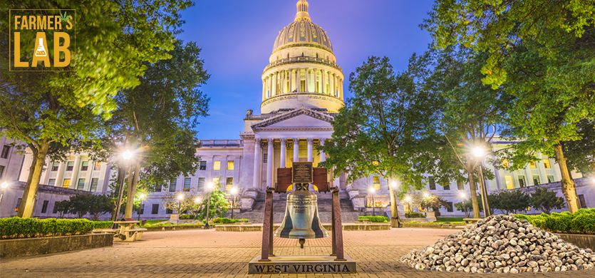 Buy Cannabis (Marijuana) Seeds Shipped Directly to Cross Lanes, West Virginia. Growing weed in Cross Lanes, WV is now easy with the help of Farmers Lab Seeds.