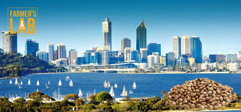 Buy Cannabis (Marijuana) Seeds Shipped Directly to Dampier, Western Australia. Growing weed in Dampier, WA is now easy with the help of Farmers Lab Seeds.