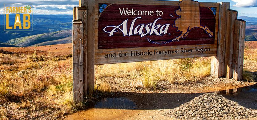 Buy Cannabis (Marijuana) Seeds Shipped Directly to Kodiak, Alaska. Growing weed in Kodiak, AK is now easy with the help of Farmers Lab Seeds.
