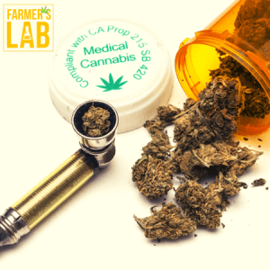 Cannabis Seeds Shipped Directly to Your Door in Sierra Madre, CA. Farmers Lab Seeds is your #1 supplier to growing Cannabis in Sierra Madre, California.