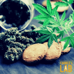 Cannabis Seeds Shipped Directly to Your Door in Ventura, CA. Farmers Lab Seeds is your #1 supplier to growing Cannabis in Ventura, California.