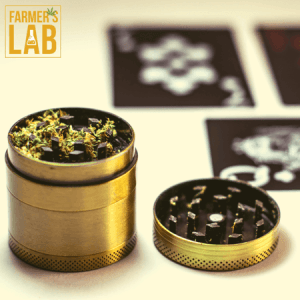 Marijuana Seeds Shipped Directly to Your Door. Farmers Lab Seeds is your #1 supplier to growing Marijuana in Connecticut.