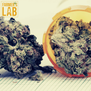 Marijuana Seeds Shipped Directly to Daveluyville, QC. Farmers Lab Seeds is your #1 supplier to growing Marijuana in Daveluyville, Quebec.
