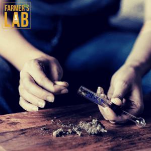Marijuana Seeds Shipped Directly to Fairmount, NY. Farmers Lab Seeds is your #1 supplier to growing Marijuana in Fairmount, New York.