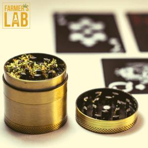 Marijuana Seeds Shipped Directly to Hamburg, NY. Farmers Lab Seeds is your #1 supplier to growing Marijuana in Hamburg, New York.