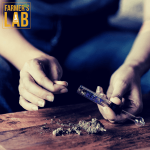 Marijuana Seeds Shipped Directly to Litchfield, IL. Farmers Lab Seeds is your #1 supplier to growing Marijuana in Litchfield, Illinois.
