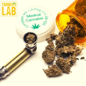 Marijuana Seeds Shipped Directly to Loomis, CA. Farmers Lab Seeds is your #1 supplier to growing Marijuana in Loomis, California.