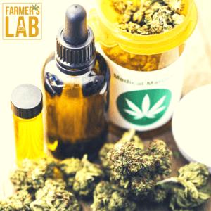 Marijuana Seeds Shipped Directly to Nampa, ID. Farmers Lab Seeds is your #1 supplier to growing Marijuana in Nampa, Idaho.