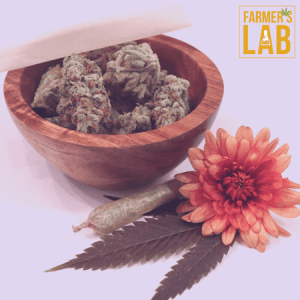 Marijuana Seeds Shipped Directly to Saint-Gabriel, QC. Farmers Lab Seeds is your #1 supplier to growing Marijuana in Saint-Gabriel, Quebec.
