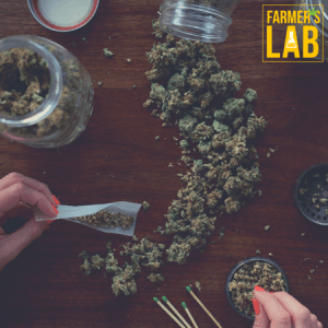 Marijuana Seeds Shipped Directly to Sainte-Anne-de-Bellevue, QC. Farmers Lab Seeds is your #1 supplier to growing Marijuana in Sainte-Anne-de-Bellevue, Quebec.