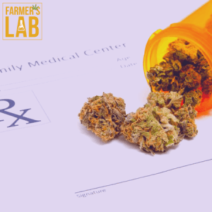 Weed Seeds Shipped Directly to Brampton, ON. Farmers Lab Seeds is your #1 supplier to growing weed in Brampton, Ontario.