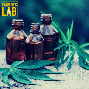Weed Seeds Shipped Directly to Portneuf, QC. Farmers Lab Seeds is your #1 supplier to growing weed in Portneuf, Quebec.