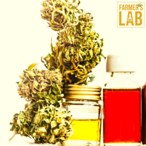 Weed Seeds Shipped Directly to Schriever, LA. Farmers Lab Seeds is your #1 supplier to growing weed in Schriever, Louisiana.
