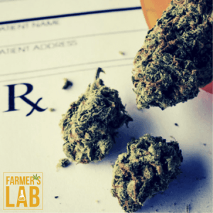 Weed Seeds Shipped Directly to Tallulah, LA. Farmers Lab Seeds is your #1 supplier to growing weed in Tallulah, Louisiana.