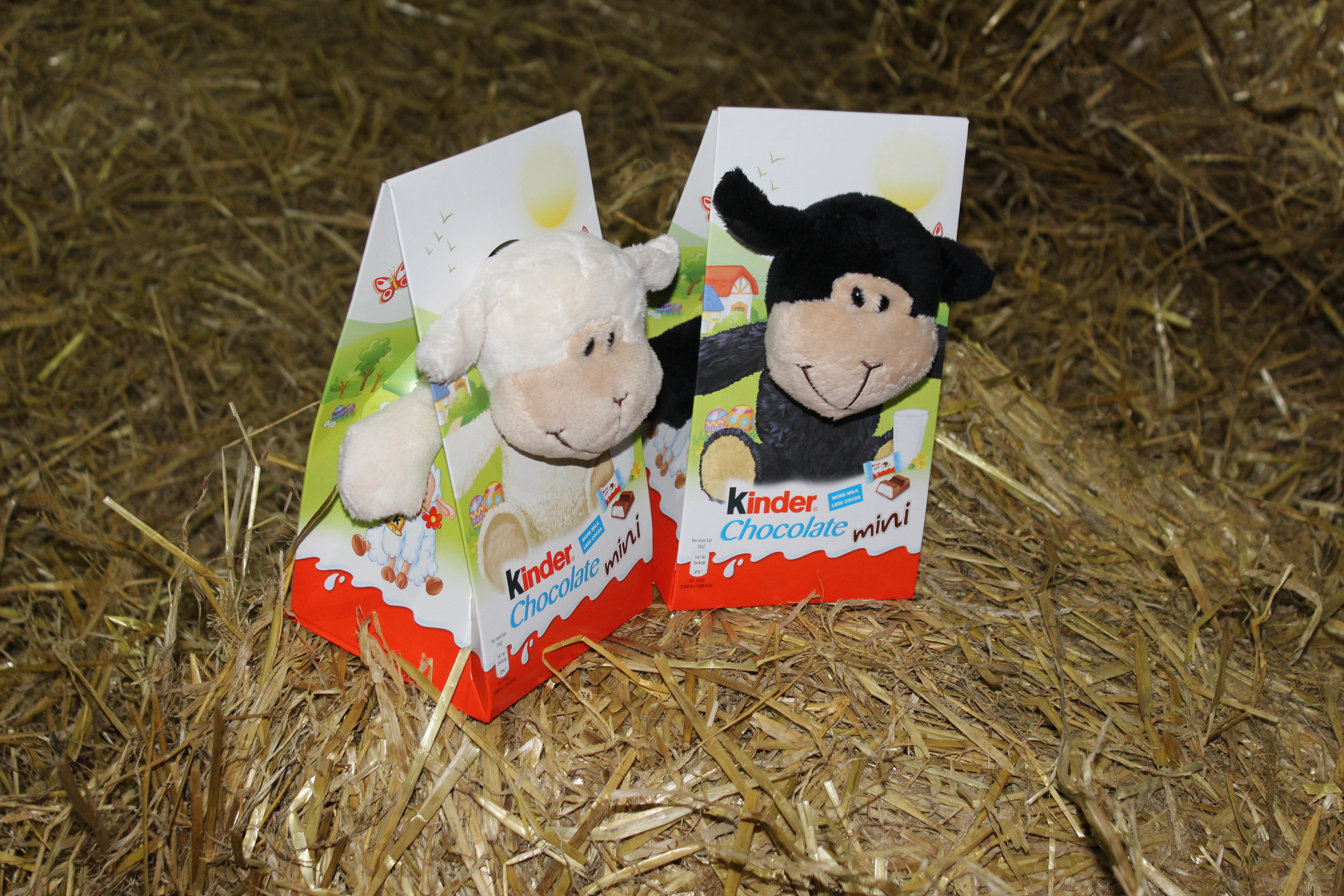 Farm themed easter gifts for children farmers wife and mummy kinder always seem to come up with cute things for easter i know it is chocolate but when i saw the lovely sheep that comes in the pack i couldnt resist negle Images