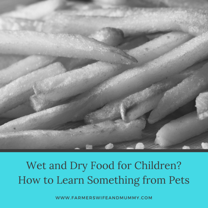 Wet and Dry Food for Children?How to Learn Something from Pets