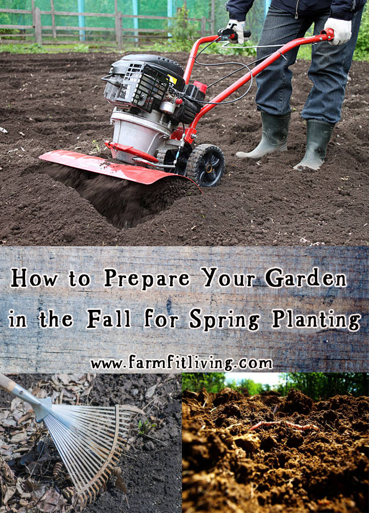 How To Prepare Your Garden In The Fall For Spring Planting