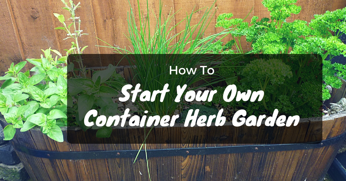 How To Start Your Own Container Herb Garden