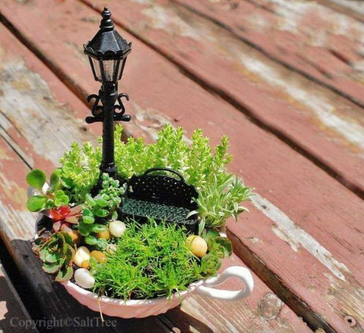 Fairy Garden Ideas: Relaxing In Central Park