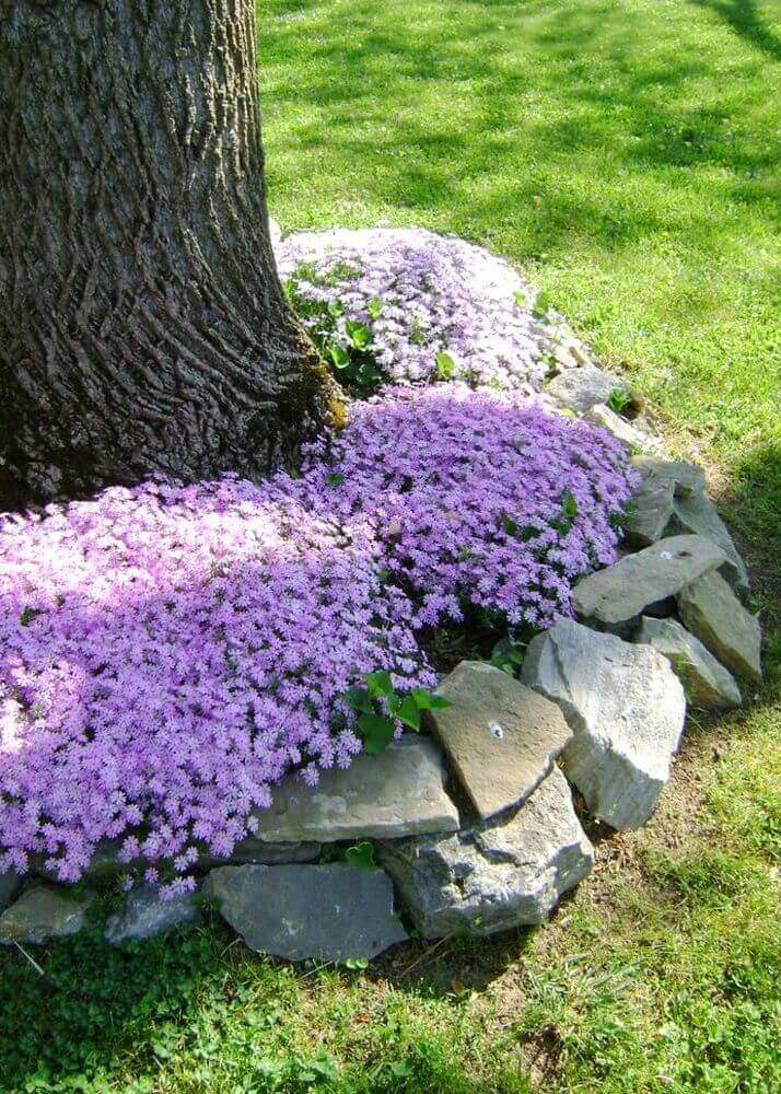 DIY Lawn Edging Ideas For Beautiful Landscaping: Flowers and Natural Stones Around a Tree